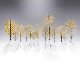 Winter macro trees