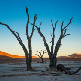 2016 06 13 Namibia Sossusvlei NIKON D800 7478 Edit 2 Edit