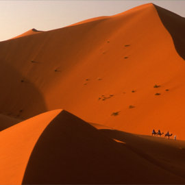 An early morning jaunt in the Sahara (natural- no PS)