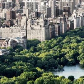 Central Park 4 K